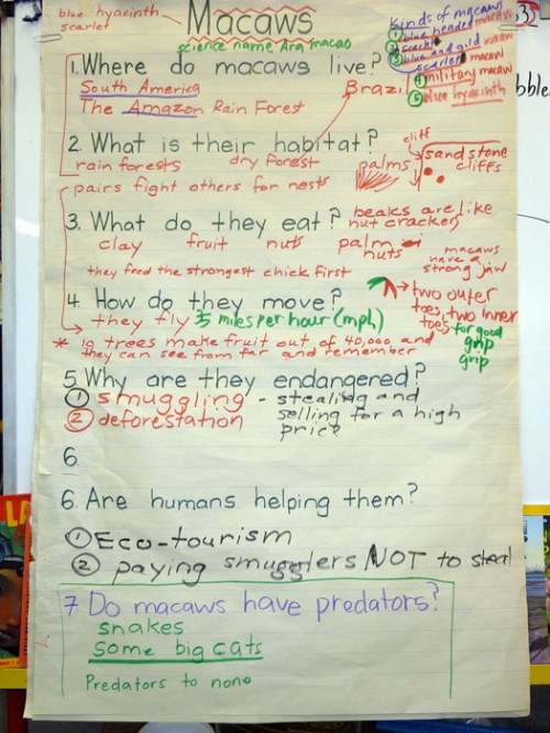 Cause And Effect Essay Topics For Kids - Cause And Effect